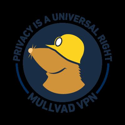 Mullvad VPN 2021.3 Crack & Registration Key