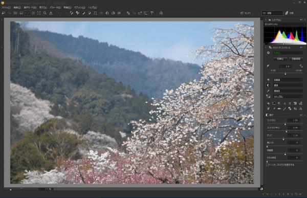 SILKYPIX Developer Studio Pro 10.0.12