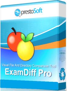 ExamDiff Pro Master Edition 11.0.1.15 Crack & Serial Key Download